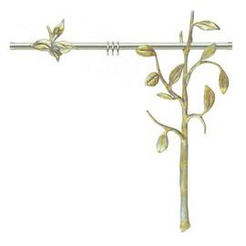 Gordijnroede Silva/Salix