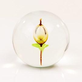 Glaskugel mit Tulpe
